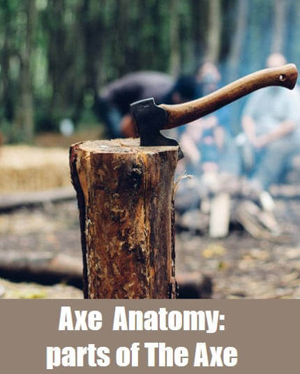 Axe Anatomy
