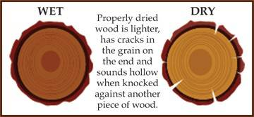 firewood-wood-types