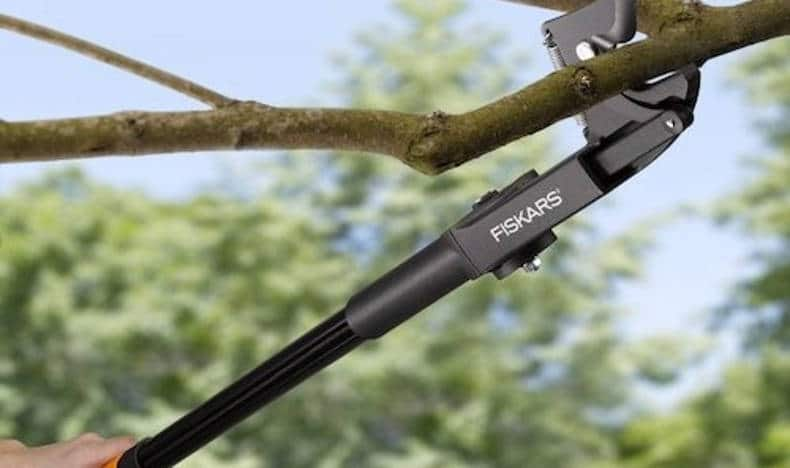Branch Cutter or Pruner