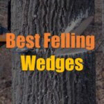 10 Best Felling Wedges for 2020 [Reviews & Guide]