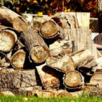 When to Split Firewood and Why It is Necessary [5 Mistakes]