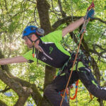 7 Best Rope for Tree Climbing in 2021 [Top Pick & Reviews]